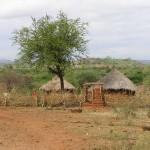 Mutino landschap